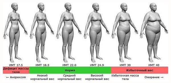 сколько можно похудеть за месяц без вреда